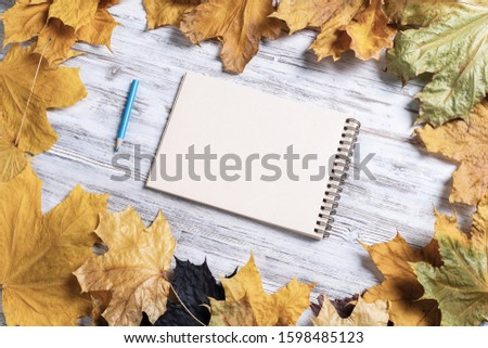 Spiral sketchbook and pen lies on vintage wooden desk with bright foliage. Flat lay with autumn leaves on white wooden surface. Blank notepad for drawing with copy space. Creative space and artwork.