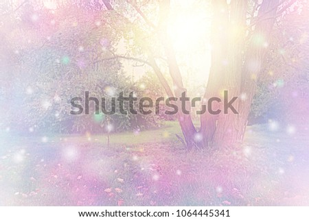 Spirit Orbs gathered around tree emitting golden white light - tree with ethereal lighting and   floating coloured orb lights depicting spiritual entities with copy space                          #1064445341