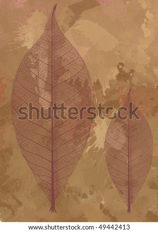 splash background with two dry leaves