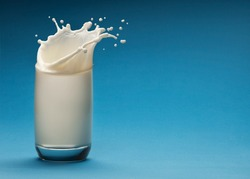 Splash of milk from the glass on a blue background. Dairy concept.