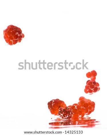 Splash of red raspberries in the water.