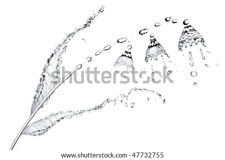 Splash on a water surface