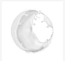 Splashes of cream isolated on white background