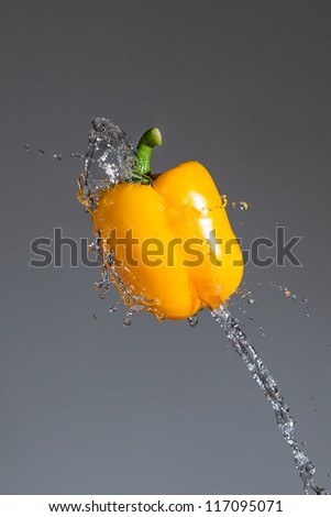 Splashing yellow pepper into water, over gray backgrounds
