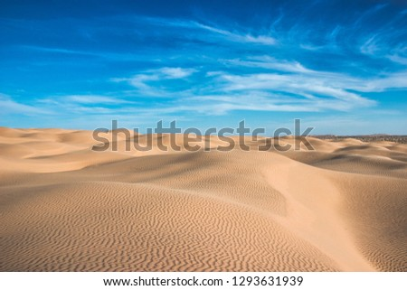 Splendid picture of Sahara desert, sand dunes, sunny day