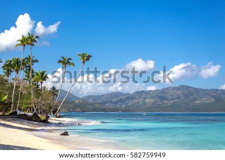 Shutterstock splendid tropical beach Playita, Dominican Republic. Blue ocean, white sand, palm trees