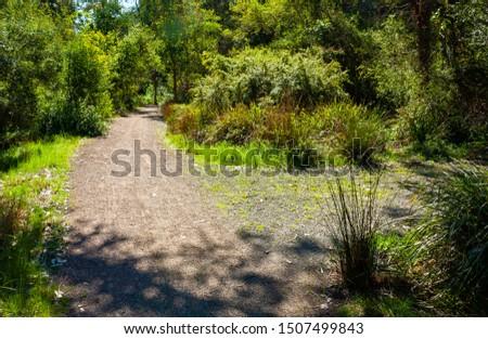 Split pathway, secret pathway to the right. #1507499843