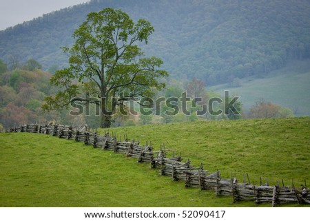 Lion's Fence - Top Rated Northern Virginia Fence Builder and