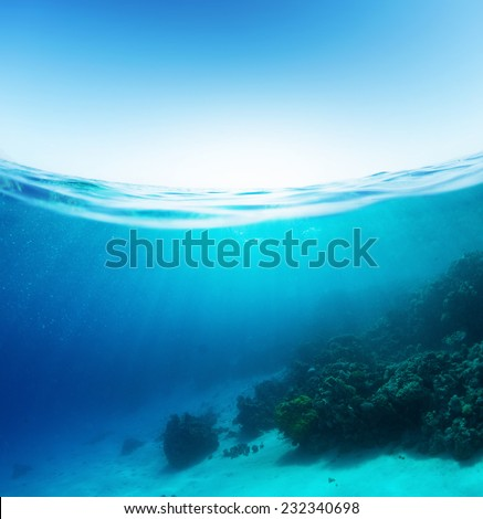 Split shot of the coral reef underwater and sea surface with waves - Shutterstock ID 232340698
