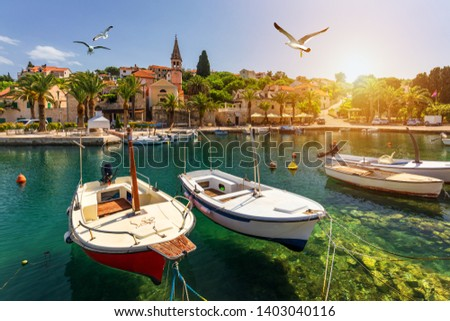 Splitska village with beautiful port and seagull's flying over the village, Brac island, Croatia. Fishing boats in Splitska village on Brac island seafront view, Dalmatia, Croatia, Croatia.