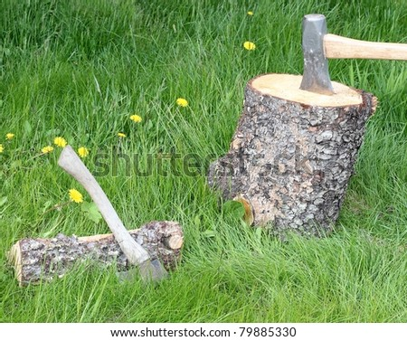 Splitting firewood: Spruce log with a wooden splitting maul in the green grass with a split log and old axe to the side