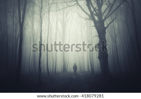 spooky forest background