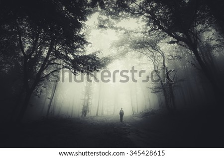 Photo of  spooky forest scene with man silhouette and dark fog