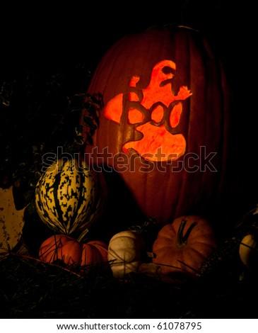 spooky glowing jack-o-lanterns