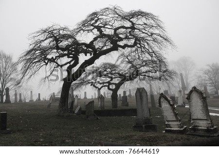 Spooky graveyard scene complete with scary trees and deep fog.  Black and white version.