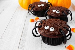 Spooky Halloween spider cupcakes. Close up against a white wood background.