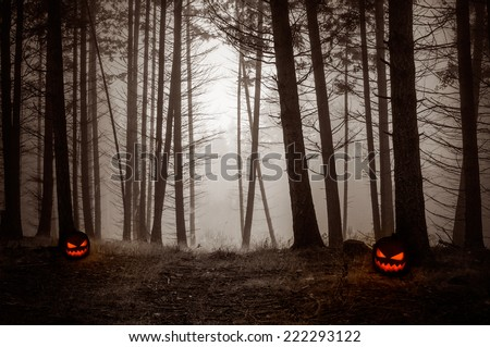 Spooky Night Forest with fog and with pumpkin lanterns