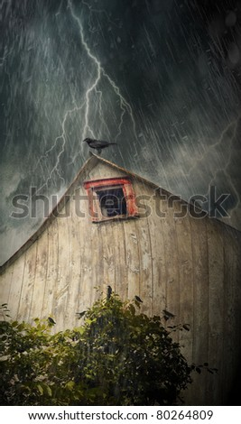 Spooky old barn with crows on a stormy rainy night