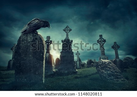 Spooky old graveyard and a bird at night
