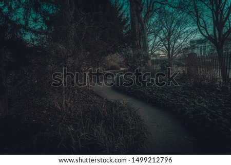 Spooky pathways with green lawns, in the garden at sunset. Top view of curve walkway on beside a river #1499212796