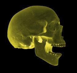 spooky screaming yellow skull