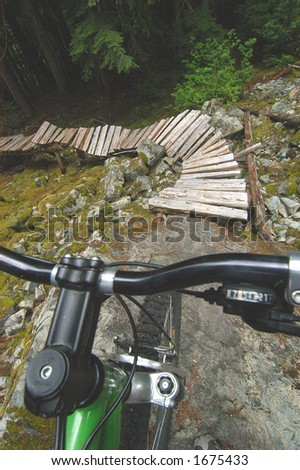 Spooky view of trail from the perspective of bike rider over handlebars.