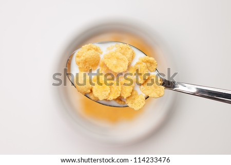 spoon full of cornflakes close-up breakfast concept