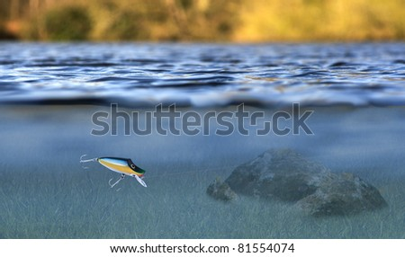 sport fishing lure in use with an underwater  and above water view