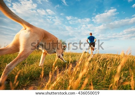 Sport lifestyle with dog. Athletic young man and labrador retriever are running on the hillside outside the city.  #436050019