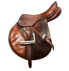 Sport saddle brown jumping on a white background