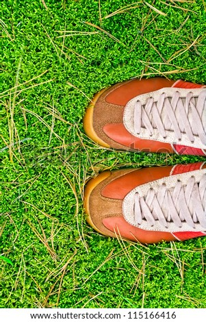 sport shoes on a green grass. concept #115166416