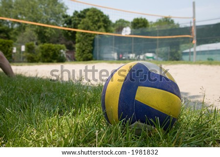 sport volleyball ball on grass