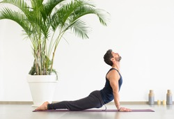 Sportive young man in black clothes doing upward facing dog yoga pose, during the work out on mat, viewed from the side against white wall and potted palm plant