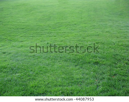 Sports field with well maintained grass perfect for soccer world cup.