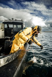 Sports fishing in Norway. A fisherman has caught a Halibut fish. He used Herring as bait, which was a success.