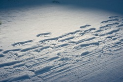 Spotlight on footsteps in the snow