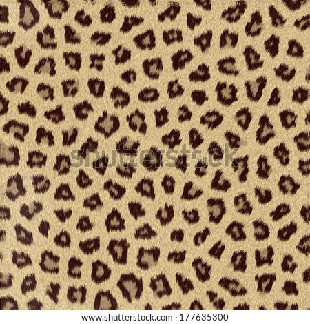 Spotted animal texture leopard #177635300