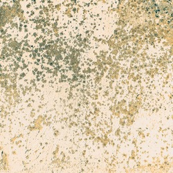 Spotted background. Abstract beige, yellow background. Colored spots, dots, strokes, scratches, scuffs. Square stylish artistic wallpaper.