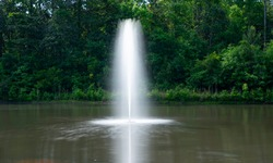 Spouting fountain improves the appearance of a pond and aerates the water.