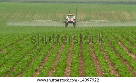 Spraying the fields