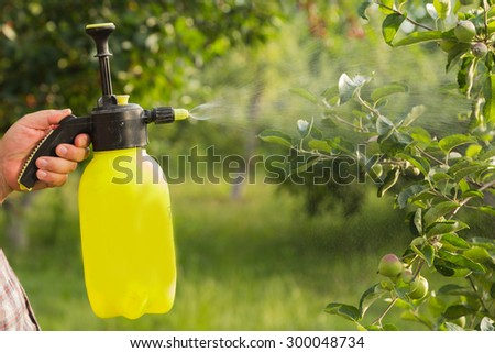 Spraying trees. The gardener takes care of the trees. The concept of gardening and farming.