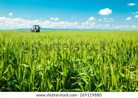 Spraying wheat crops field #269119880