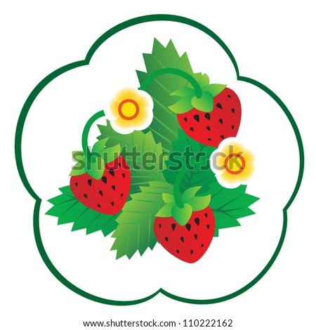 Sprig with strawberries. The illustration on a white background.