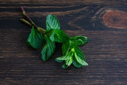 Sprigs of Mint Leaves on a Wood Cutting Board: Two sprigs of fresh mint leaves on a dark wooden background