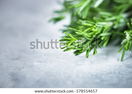 Sprigs of rosemary  at gray concrete table. Cooking or food background. Food ingredients. Close up #578554657