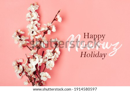 Sprigs of the apricot tree with flowers on pink background Text Happy Nowruz Holiday Concept of spring came Top view Flat lay Hello march, april, may, persian new year