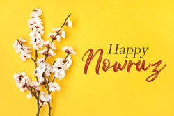 Sprigs of the apricot tree with flowers on yellow background Text Happy Nowruz Holiday card Concept of spring came Top view Flat lay Hello march, april, may, persian new year