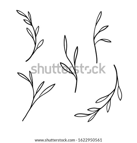 Sprigs set illustration isolated on white background. Sprigs sketch. Spring sprigs. Spring doodle set, Isolated hand drawn nature elements Stock photo ©