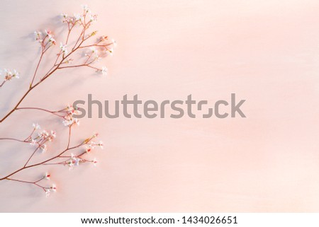 Sprigs with small white flowers on a wooden coral background with space for text - beautiful floral background
