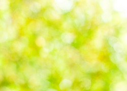 Spring abstract background, blurred sun light - bokeh. Green, yellow and white dots.